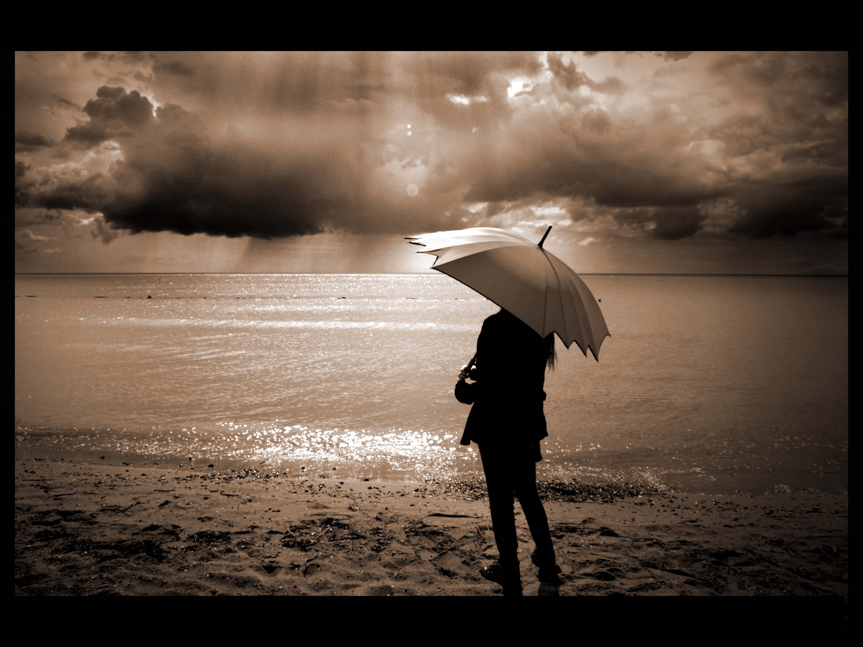 A Divorce Coach can help you navigate the emotional storm as you go through this life transition.